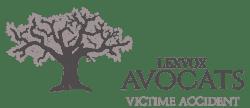 Victime Accident Logo